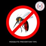 Mosquito Prevention Tips